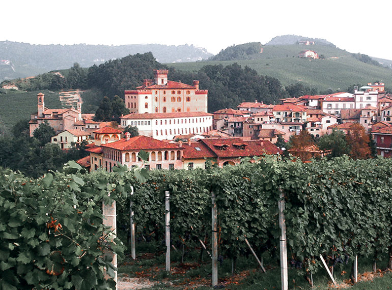 tour from turin to barolo